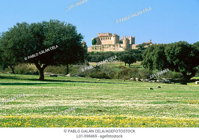 Piedrabuena castle and grassland with holm oaks. Cáceres province. Extremadura. Spain