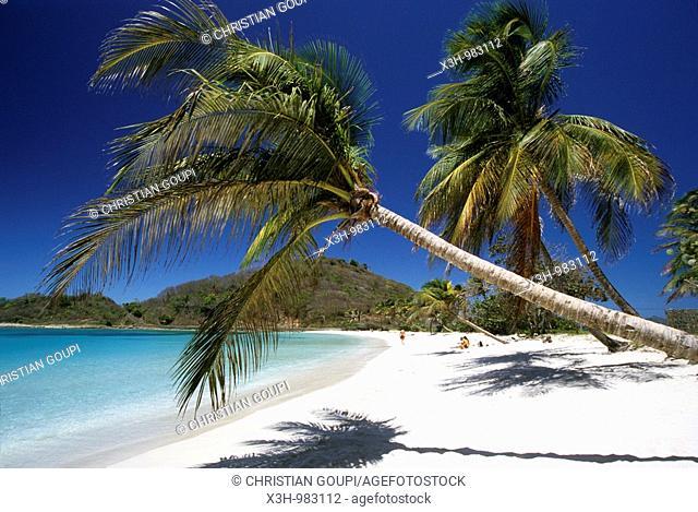 beach of Mayreau,Grenadines islands,Saint Vincent and the Grenadines,Winward Islands,Lesser Antilles,Caribbean Sea
