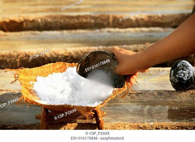 Work on the salt production - traditional method. Bali, Indonesi