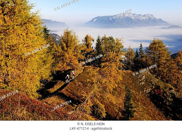 Mountain bikers passing mount Feuerpalven, sea of fog above lake Koenigssee, mount Untersberg in background, Berchtesgadener Land, Upper Bavaria, Germany