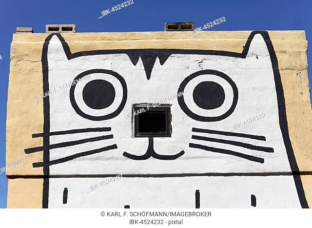 Head of a cat, painted on house wall, graffiti, St. Elmo Bay, Valletta, Malta