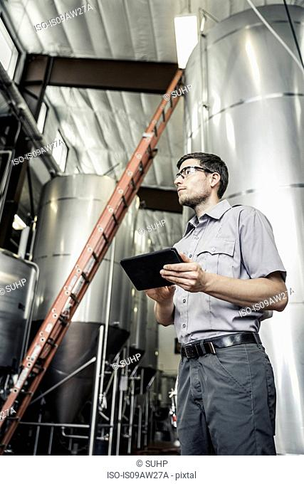 Low angle view of young man in brewery holding digital tablet looking away