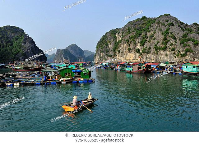 Asia,South East Asia,Vietnam,houses boats in Cat Ba Island,Halong Bay