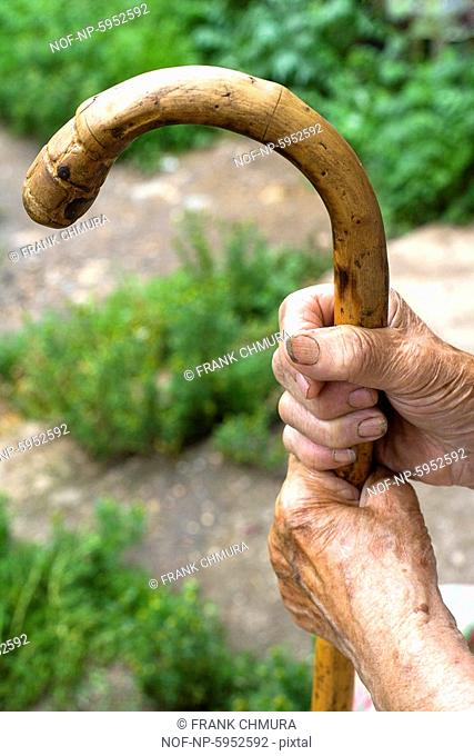 Hands of an old peasant woman holding a walking stick. Czech Republic