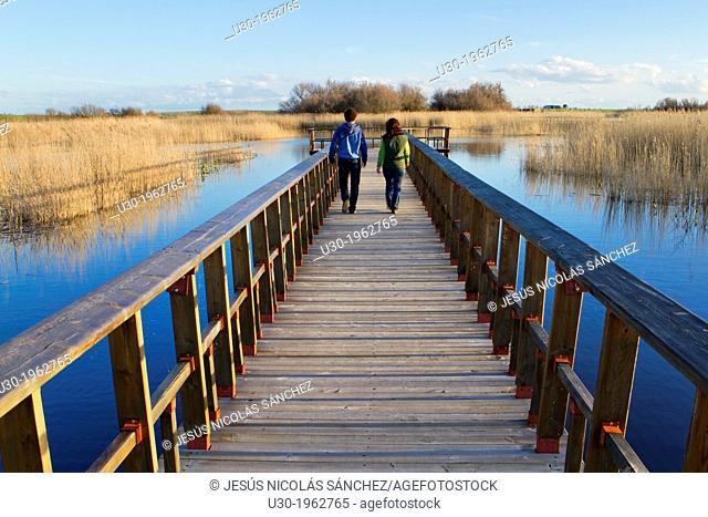 Daimiel National Park, in Ciudad Real province. Castilla-La Mancha, Spain