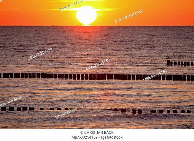 Breakwaters in the Baltic Sea, Zempin, island Usedom, Mecklenburg-West Pomerania, Germany