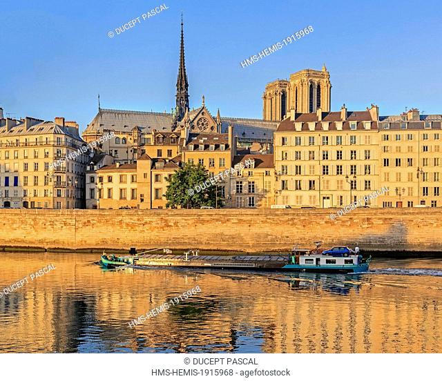 France, Paris, area listed as World Heritage by UNESCO, view of Notre Dame cathedral on the Ile de la Cite at sunrise