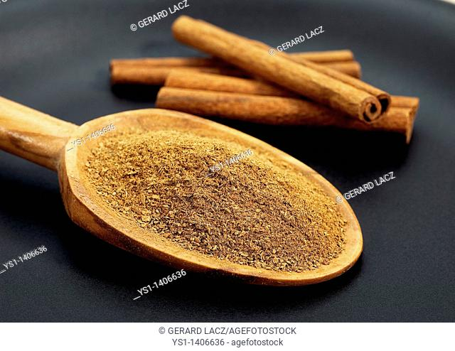 CINNAMON BARK AND POWDER cinnamomum zeylanicum AGAINST BLACK BACKGROUND