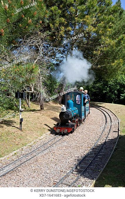 England Devon Beer Model steam train at 'Pecorama' model railway centre