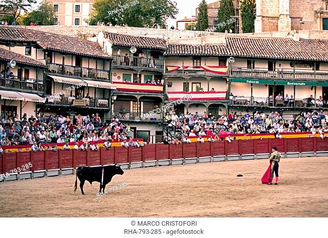 The main square of the village used as the Plaza de Toros, the bulls are young novillos, Chinchon, Comunidad de Madrid, Spain, Europe