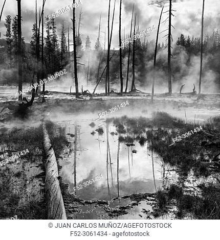 Hot Springs, Yellowstone National Park, Unesco World Heritage Site, Wyoming, Usa, America