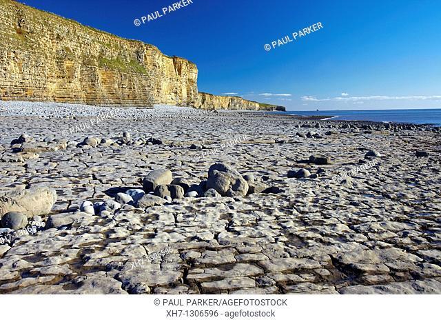 Rocky Beach at Llantwit Major, the Glamorgan Heritage Coast, Glamorgan, South Wales, UK