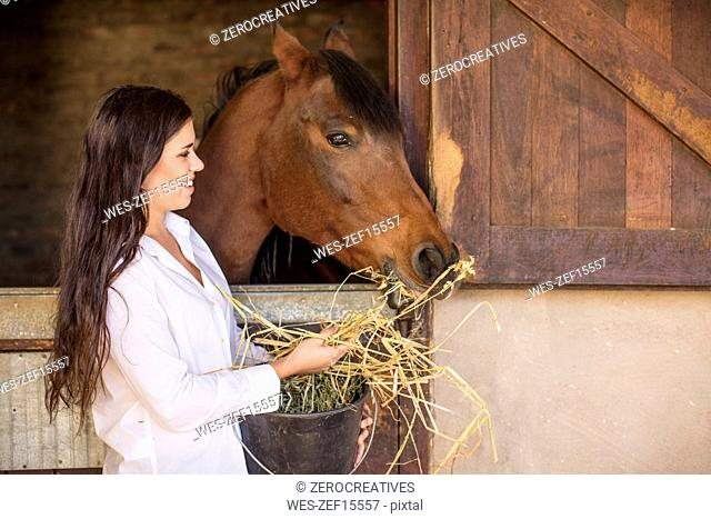 Smiling woman feeding a horse on a farm