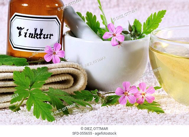 Herb robert geranium robertianum for tincture and tea