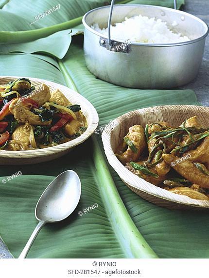 Two chicken curries Thailand