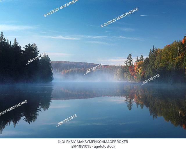 Mist over Smoke lake, Algonquin Provincial Park, Ontario, Canada