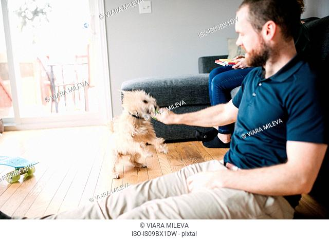 Man and pet dog in living room