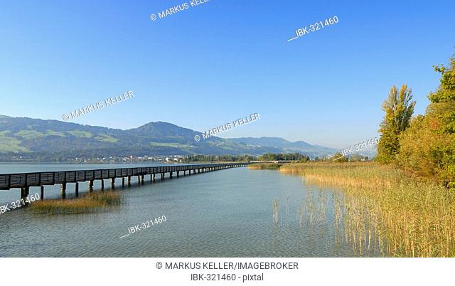 Rapperswil - wooden bridge over the lake zurich - canton of St. Gallen, Switzerland, Europe