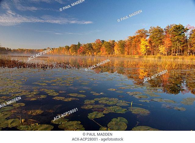 Fall colors at thier peak in Muskoka Ontario Canada