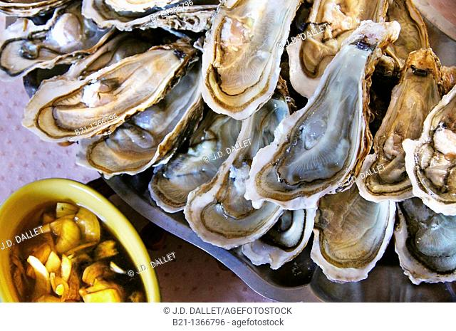 Oysters and shallots with vinegar, Gironde, Aquitaine, France