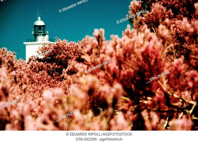 Lighthouse. Santa Pola. Alicante province. Spain