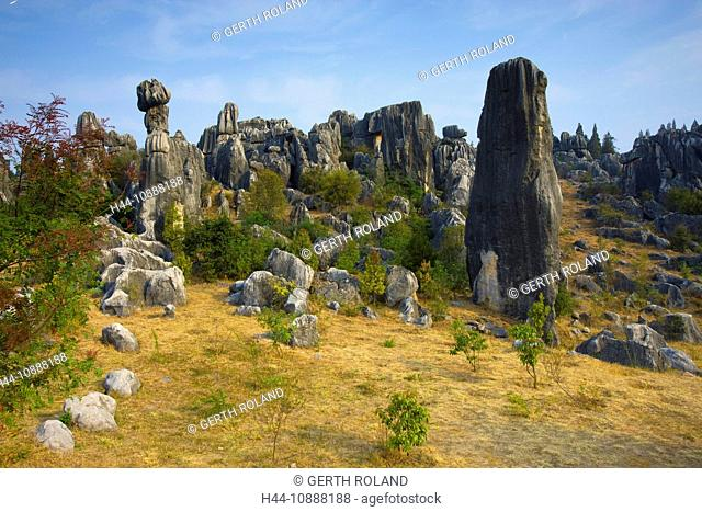 Shilin Stone Forest, China, Asia, stone wood, cliff forms, cliff towers, erosion, karst, formations, shrubs, bushes