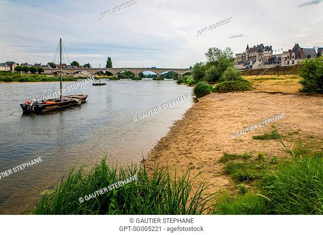 BANKS OF THE LOIRE AT THE FOOT OF THE CHATEAU D'AMBOISE, LOIR ET CHER, (41), CENTRE VAL DE LOIRE REGION, FRANCE