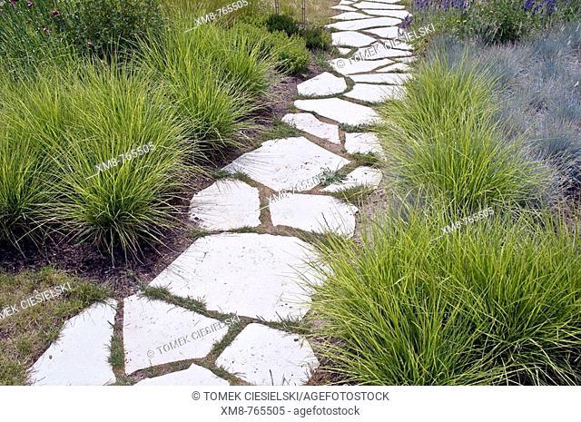 Pathway and Koeleria grass