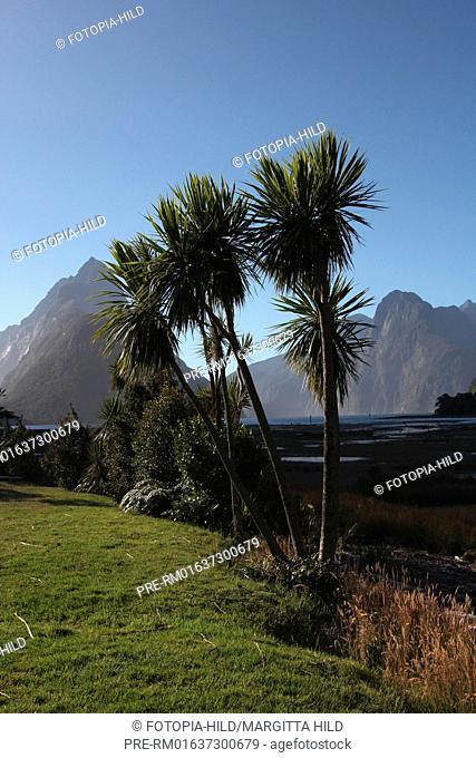 Milford Sound with Mitre Peak, Fjordland National Park, South Island, New Zealand / Milford Sound mit dem Mitre Peak, Fjordland-Nationalpark, Südinsel