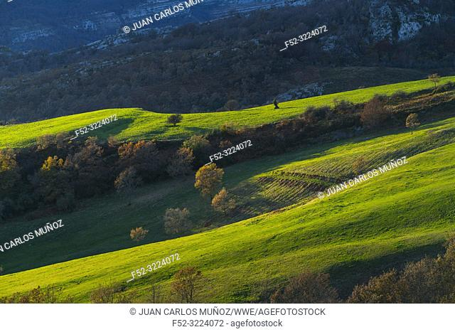 Landscape in Astrana, Soba Valley, Valles Pasiegos, Cantabria, Spain, Europe