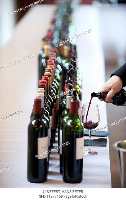 A wine journalist tasting 2014 Cru Bourgeois (Bordeaux, France)