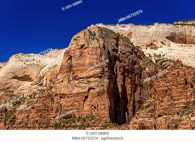 The USA, Utah, Washington county, Springdale, Zion National Park, Zion canyon with Angels Landing at Big Bend