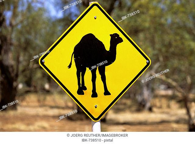 Dromedary Camel crossing sign, Northern Territory, Australia