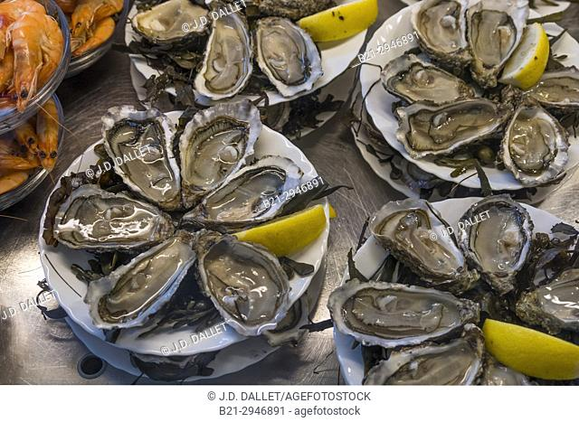 France, Nouvelle aquitaine, Gironde. Food: Oysters,..