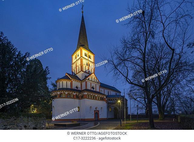 Bonn, Schwarzrheindorf, D-Bonn, Federal City, Rhine, Rhineland, Sieg, Sieg valley, Kottenforst, nature reserve Rhineland, North Rhine-Westphalia, NRW