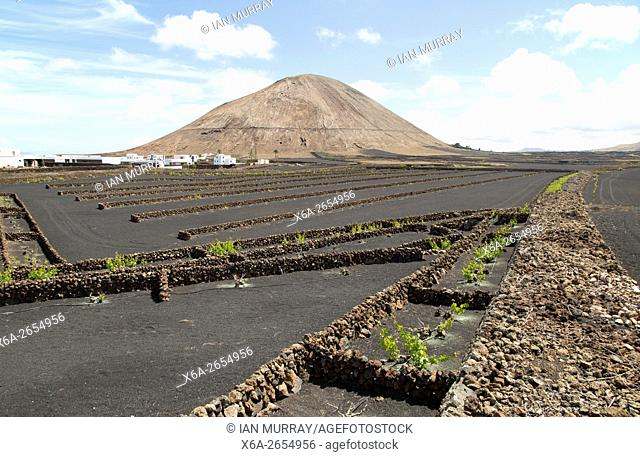 Volcano cone of Montana Tinache and black volcanic soil farmland, near Tinajo, Lanzarote, Canary Islands, Spain