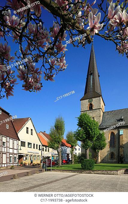 D-Werther (Westfalen), Ravensberger Mulde, Ravensberger Huegelland, TERRA.vita Nature Park, Teutoburgian Forest, East Westphalia, North Rhine-Westphalia, NRW