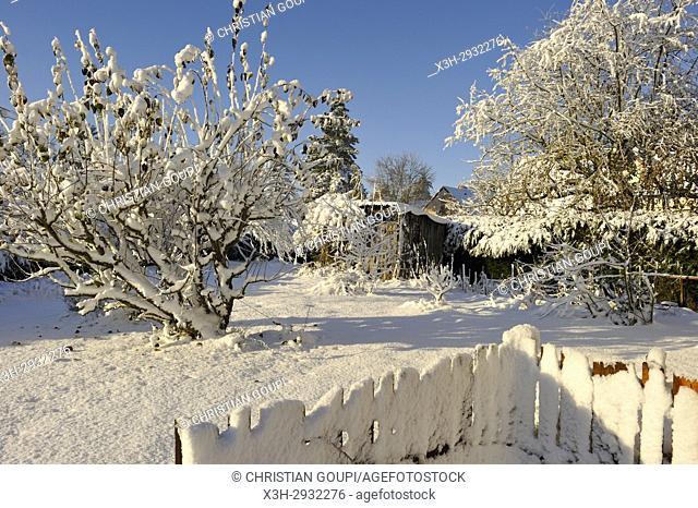 garden in the snow, Eure-et-Loir department, Centre-Val de Loire region, France, Europe