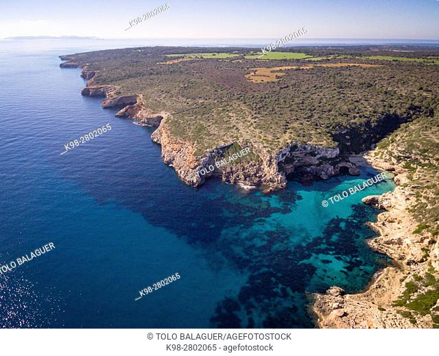 Natural area of special interest (ANEI) between Cap Salines and Cala Marmols, Santanyi, Mallorca, balearic islands, spain, europe