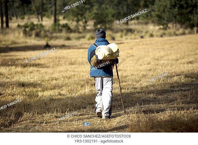 A pilgrim walks through a field as he travels to reach the Basilica of Guadalupe in Mexico City, December 7, 2008  Hundreds of thousands of Mexican pilgrims...