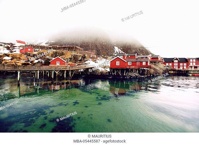 Å in Lofoten in the fog