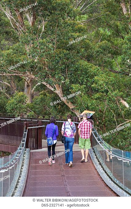 Australia, Western Australia, Perth, Kings Park, Western Australia Botanic Garden, walkway with people, NR