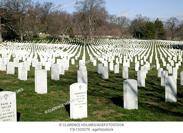 Rows of white grave markers fade into the distance in Arlington National Cemetery, Arlington, Virginia, USA