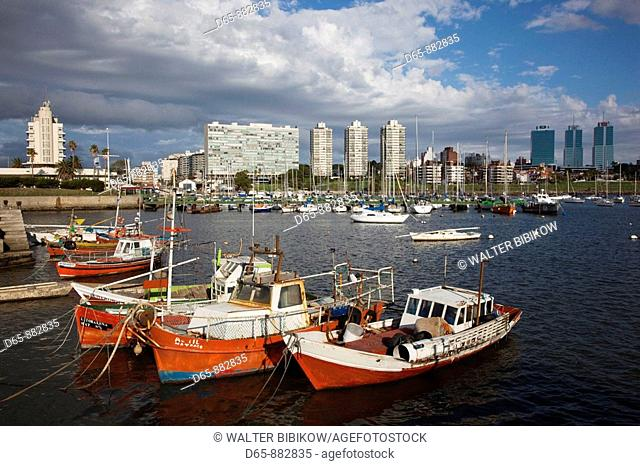 Puerto del Buceo port, Buceo, Montevideo, Uruguay