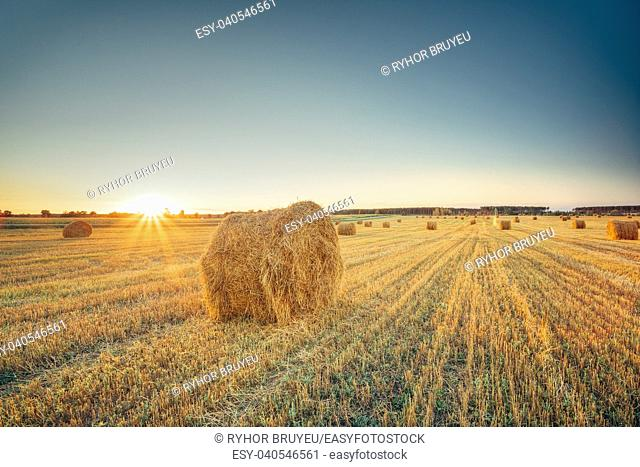 Rural Landscape Field Meadow With Hay Bales After Harvest In Sunny Evening At Sunset Or Sunrise In Late Summer. Blue Sunny Sky And Sun With Sunrays