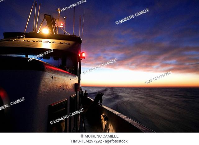 France, Pyrennees Orientales, Port Vendres, Lamparo fishing on the Gerrard Duc