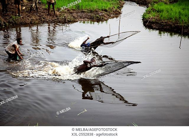 Traditional fishing in Douraghio. Ivory Coast. Africa