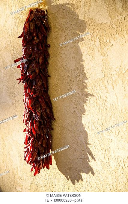 Bunch of red chili peppers drying on stucco wall