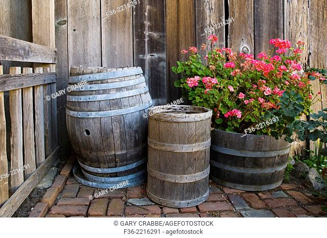 Wooden barrels next to barn wall, Wilder Ranch State Park, Santa Cruz, California