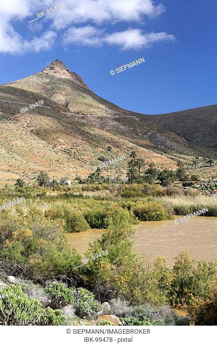 Storage lake Embalse de las Penitas near Vega de Rio Palmas, Fuerteventura , Canary Islands
